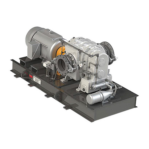 Промышленная роторная воздуходувка Рутса CCМ ВР-10.7 GE RAS